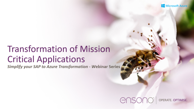 Transformation of Mission Critical Applications, SAP